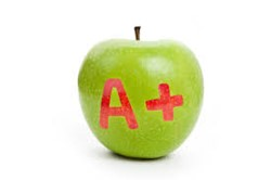 Mayfield City Schools receive an A+ rating from Niche.com