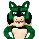 2021 Homecoming Week Calendar: Go, Wildcats! Parade, Bonfire, Alumni Induction, Tailgate, Football Game & Dance