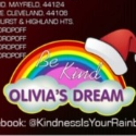 Olivia's Dream ~ Toys for Tots Collection