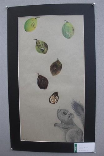 gallery 49